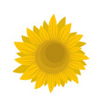 summer sunflower icon flat style vector image vector image