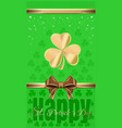 template flyer for st patricks day vector image vector image