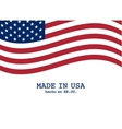 USA flag marketing and production design vector image vector image