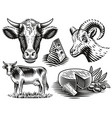 a set black and white vintage for a cheese vector image