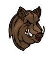 angry boar head mascot wild pig or hog icon