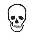 image of a human skull for design vector image vector image