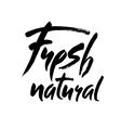 Modern brush lettering Handwritten words - fresh vector image vector image