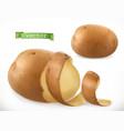 potato peelings curl 3d realistic icon vector image vector image