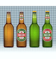 realistic beer bottle with labels vector image