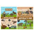 safari hunting animals hunter gun and equipment vector image vector image