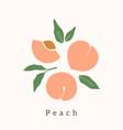 stylish peach design contemporary art print vector image