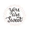 You are Sweet hand drawn brush lettering vector image