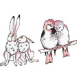 animal couples in love vector image