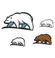 Arctic bears vector image vector image