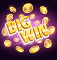 big win money prize winning gambling vector image vector image