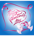 doves on Valentines Day vector image