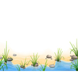Grass and pebbles on a river bank vector image