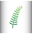 Olive twig sign vector image vector image