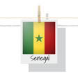 photo of senegal flag vector image