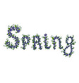 spring word composed of flowers and petals hand vector image
