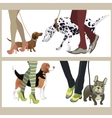 Cute dogs with their owners vector image