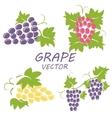 flat grape icons set vector image