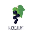 Blackcurrant icon in flat style vector image vector image