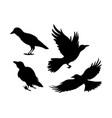cartoon set black halloween holiday silhouette vector image