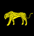 cheetah side view graphic vector image