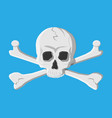 death skull and crossbones vector image