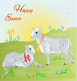 Easter lamb and sheep and daffodil vector image vector image