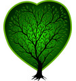 green tree with heart vector image vector image