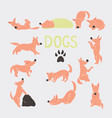 orange cartoon dog character set vector image