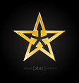 Abstract Gold star with arrows on black background vector image vector image