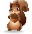 cartoon funny squirrel holding pinecone vector image vector image