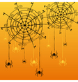 decorative spider webs and spiders vector image