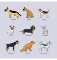 Doodle dog breeds set vector image vector image