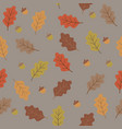 orange yellow brown and beige oak tree leaves and vector image