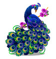 beautiful bird peacock sitting on a perch with vector image