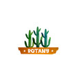 Botany cactus in a pot the logo for printing vector image