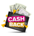 cash back concept realistic wallet paper vector image