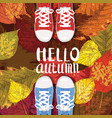 hello autumn lettering sneakers shoes on autumn vector image