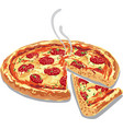 hot pizza salami vector image vector image