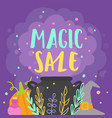 magic sale witchs stuff and potion steam vector image vector image