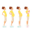 pregnancy stages happy mom with newborn child vector image