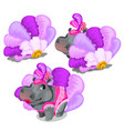 hippo cabaret dancer in pink stage costume vector image