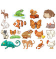 large set wildlife with many types animals vector image vector image