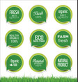 modern ecology sticker and tag green collection vector image vector image