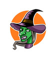 Witch Head vector image vector image
