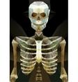Abstract polygonal skeleton vector image