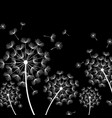 Black background with stylized white dandelion