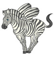 fun cute cartoon zebra with striped wings vector image vector image