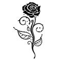 Rose flower love vector image vector image