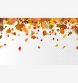 stock autumn falling leaves on vector image vector image